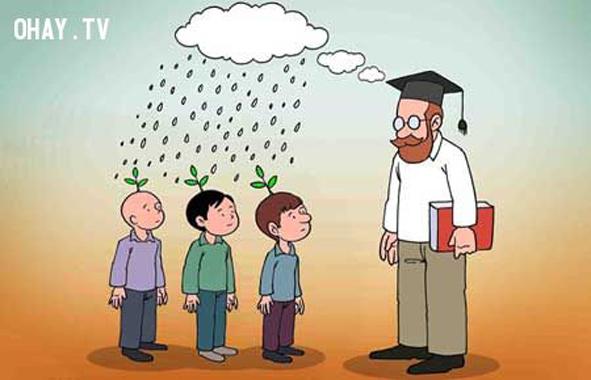 12. Sứ mệnh của người thầy là ươm mầm tài năng cho thế hệ trẻ.