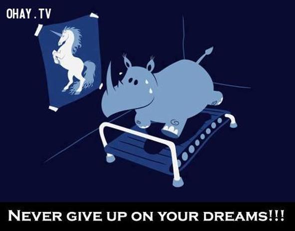 7. Đừng bao giờ từ bỏ ước mơ của bạn.