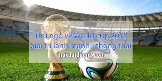Thư ngỏ về World cup 2018